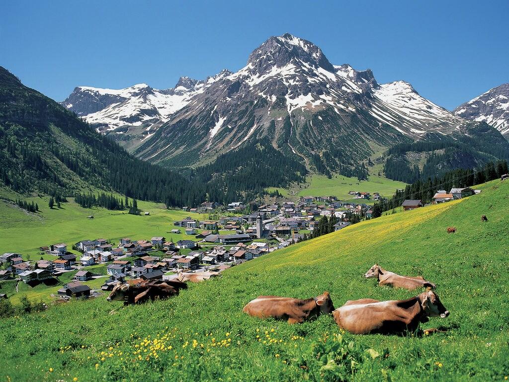 Ferienwohnung Andrea (254031), Thüringerberg, Grosses Walsertal, Vorarlberg, Österreich, Bild 28