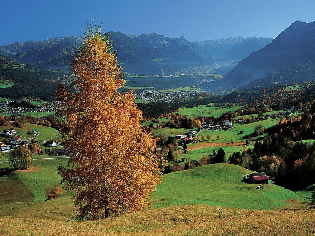 Ferienwohnung Andrea (254031), Thüringerberg, Grosses Walsertal, Vorarlberg, Österreich, Bild 30