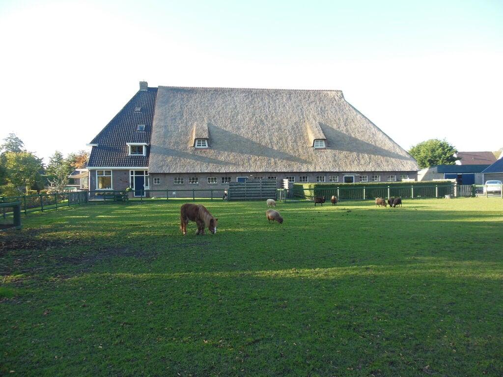 Ferienwohnung Sonniges, tierfreundliches Apartment bei Arum (61003), Grauwe Kat, , , Niederlande, Bild 13