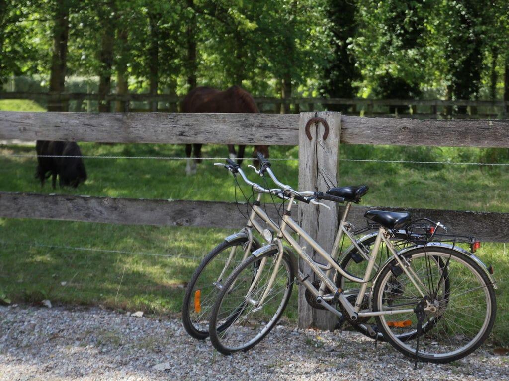 Ferienhaus Vintage-Chalet mit Swimmingpool in Quend-Plage-les-Pins (58665), Rue, Somme, Picardie, Frankreich, Bild 17