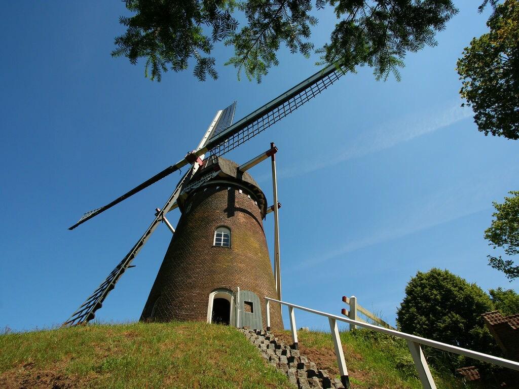 Ferienhaus De Verrekijker (60495), Bergharen, Arnheim-Nimwegen, Gelderland, Niederlande, Bild 4