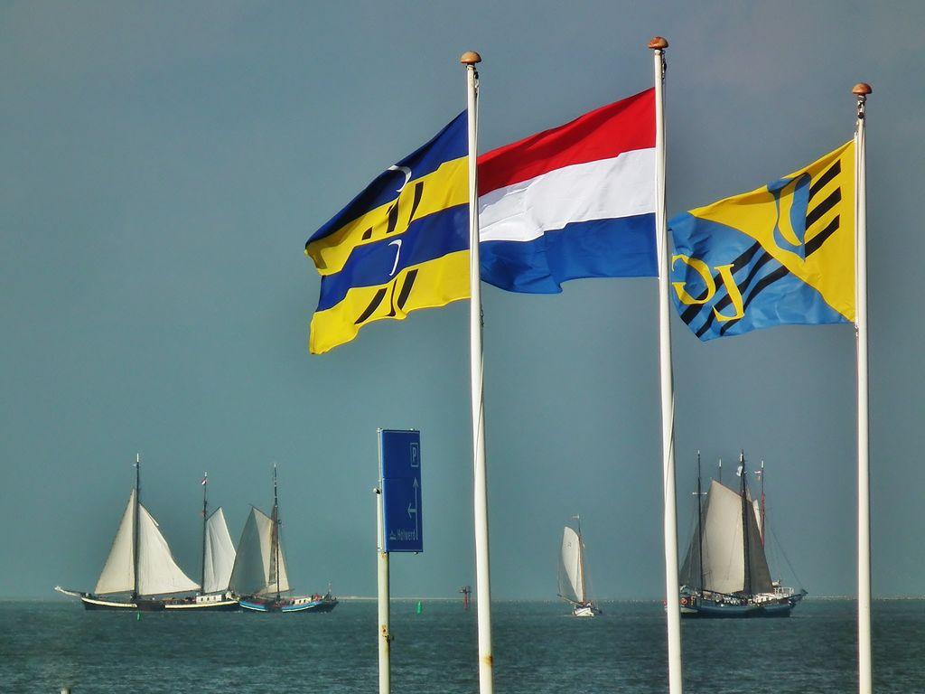 Ferienwohnung Zomerkoninkje (58797), Nes Ameland, Ameland, Friesland (NL), Niederlande, Bild 10