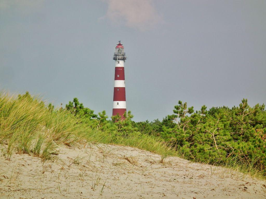 Ferienwohnung Zomerkoninkje (58797), Nes Ameland, Ameland, Friesland (NL), Niederlande, Bild 17