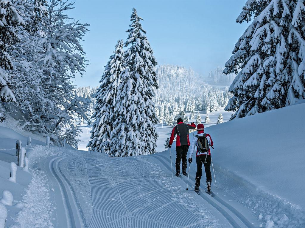 Ferienwohnung Bellevue (61347), La Tzoumaz, 4 Vallées, Wallis, Schweiz, Bild 18