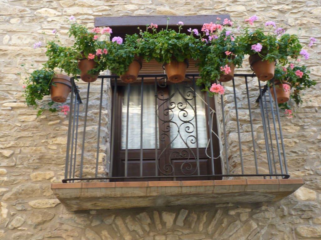 Appartement de vacances Casa Vella (60061), Castigaleu, Huesca, Aragon, Espagne, image 2