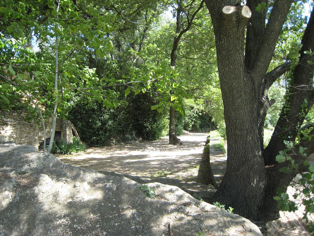 Maison de vacances Souleiado (59029), L'Isle sur la Sorgue, Vaucluse, Provence - Alpes - Côte d'Azur, France, image 15