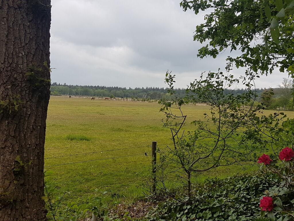 Ferienhaus Buitenplaats Berg en Bos 18 (61503), Lemele, Salland, Overijssel, Niederlande, Bild 21