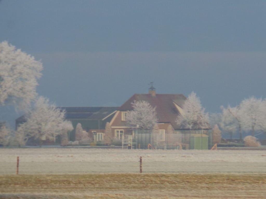 Ferienhaus Buitenplaats Berg en Bos 15 (61499), Lemele, Salland, Overijssel, Niederlande, Bild 26