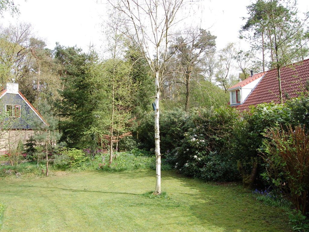 Ferienhaus Buitenplaats Berg en Bos 39 (61508), Lemele, Salland, Overijssel, Niederlande, Bild 21