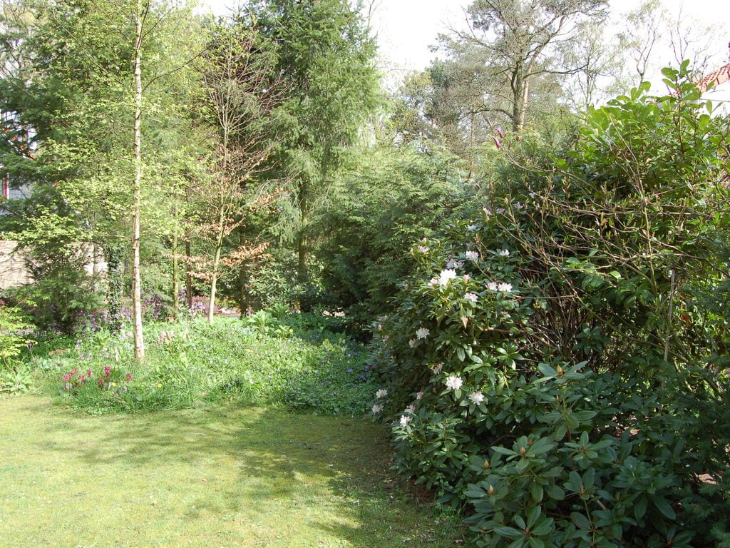 Ferienhaus Buitenplaats Berg en Bos 39 (61508), Lemele, Salland, Overijssel, Niederlande, Bild 23