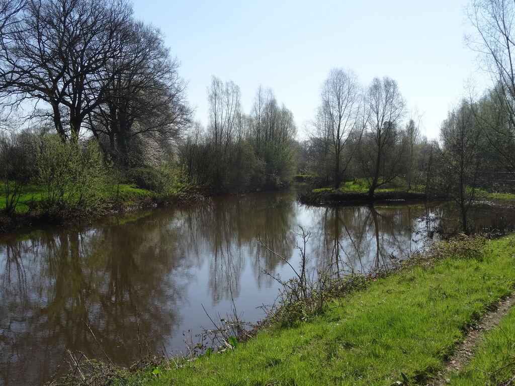 Ferienhaus Schönes Ferienhaus mit großem Garten, nahe De Lemelerberg (61508), Lemele, Salland, Overijssel, Niederlande, Bild 16