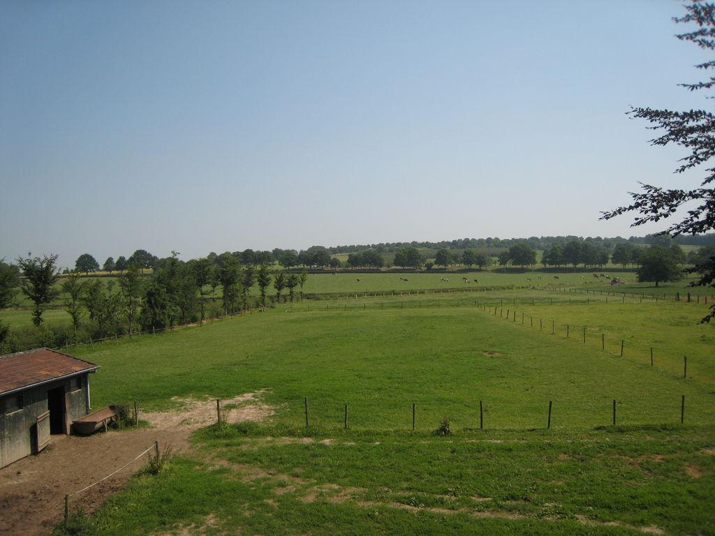 Ferienhaus Meschermolen 14 (65741), Mesch, Zuid-Limburg, Limburg (NL), Niederlande, Bild 28