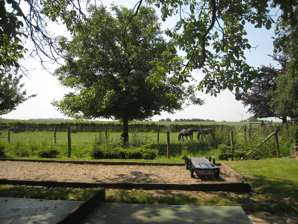 Ferienwohnung Schönes Apartment in Mesch mit Parkmöglichkeit (65742), Eijsden, Zuid-Limburg, Limburg (NL), Niederlande, Bild 14