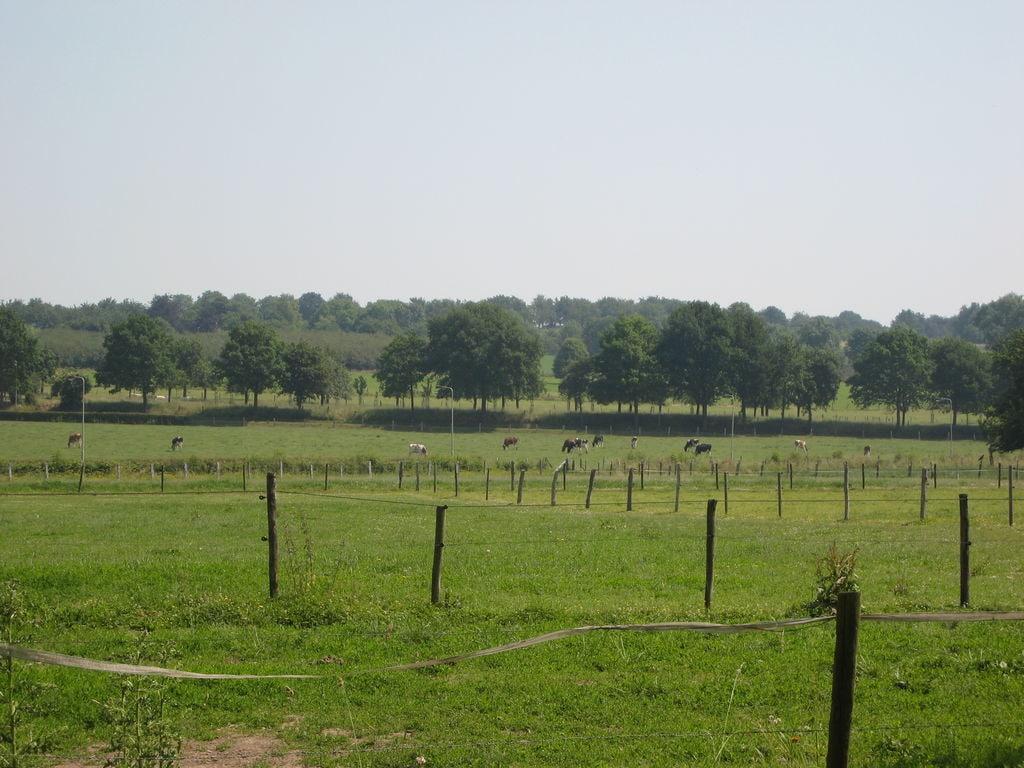 Ferienwohnung Meschermolen 5 (65734), Mesch, Zuid-Limburg, Limburg (NL), Niederlande, Bild 12