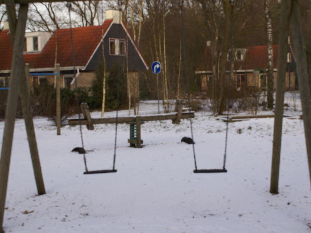Ferienhaus Buitenplaats Berg en Bos 23 (61506), Lemele, Salland, Overijssel, Niederlande, Bild 31