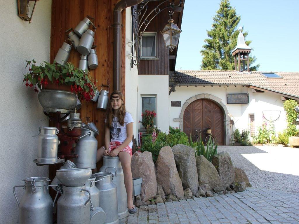 Ferienhaus Gemütliches Chalet mit Geschirrspüler in den Hochvogesen (65563), Le Thillot, Vogesen, Lothringen, Frankreich, Bild 16