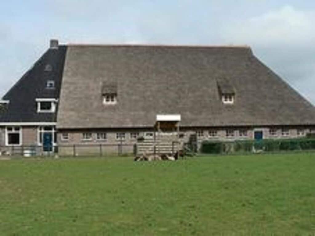 Ferienwohnung De Grup (61006), Grauwe Kat, , , Niederlande, Bild 7