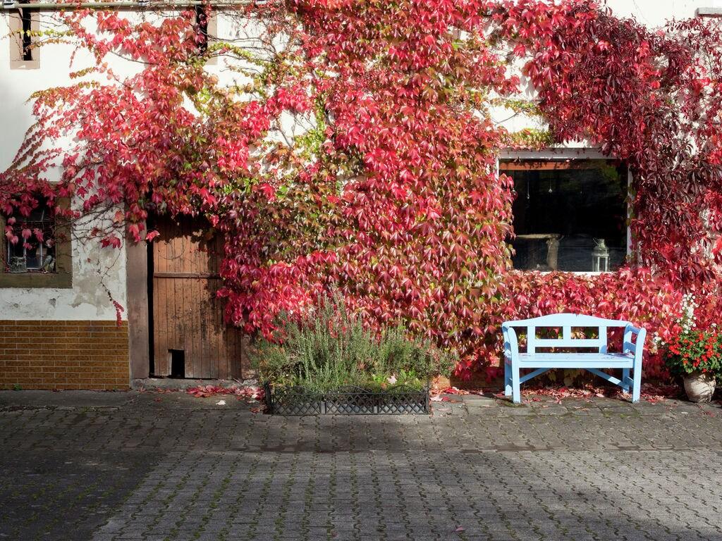 Ferienhaus Am Inselsberg (255571), Tabarz, Thüringer Wald, Thüringen, Deutschland, Bild 19