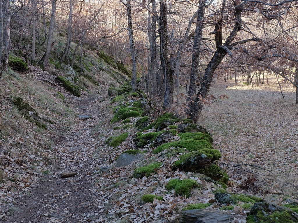 Ferienwohnung Cobert d'en Piarró (73612), Isavarre, Lleida, Katalonien, Spanien, Bild 20