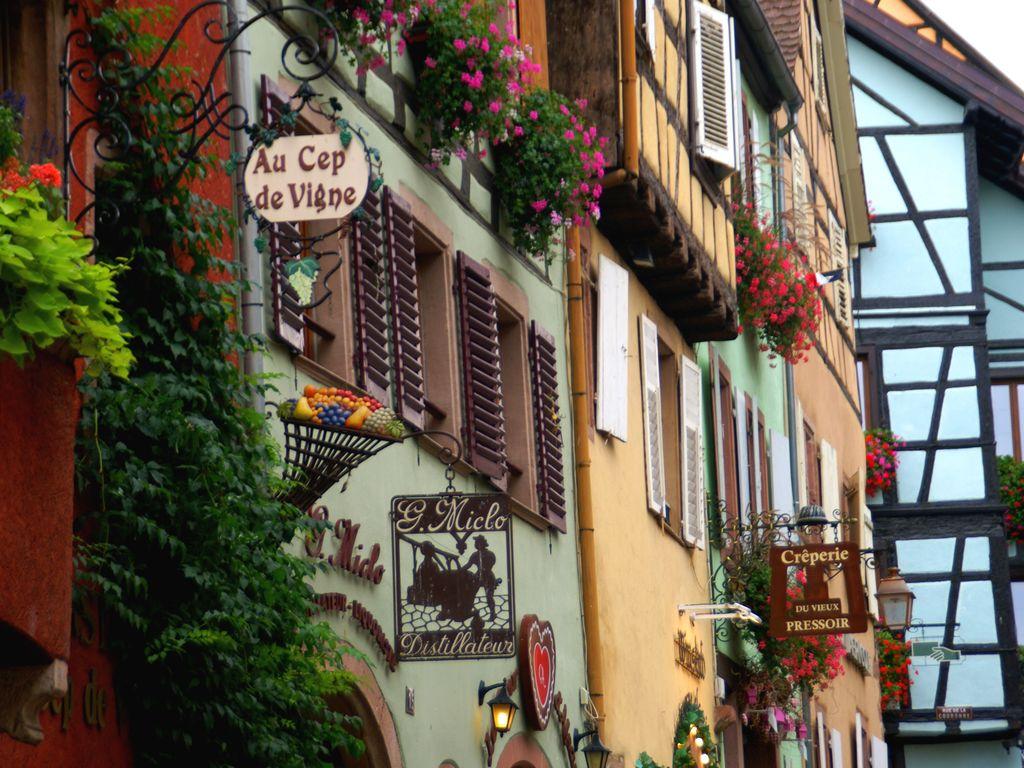 Ferienwohnung La Stub (302845), Riquewihr, Oberelsass, Elsass, Frankreich, Bild 38