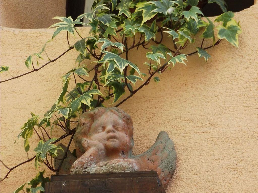 Holiday apartment Eine Vintage-Ferienwohnung in Riquewihr mit Terrasse (302799), Riquewihr, Haut-Rhin, Alsace, France, picture 24