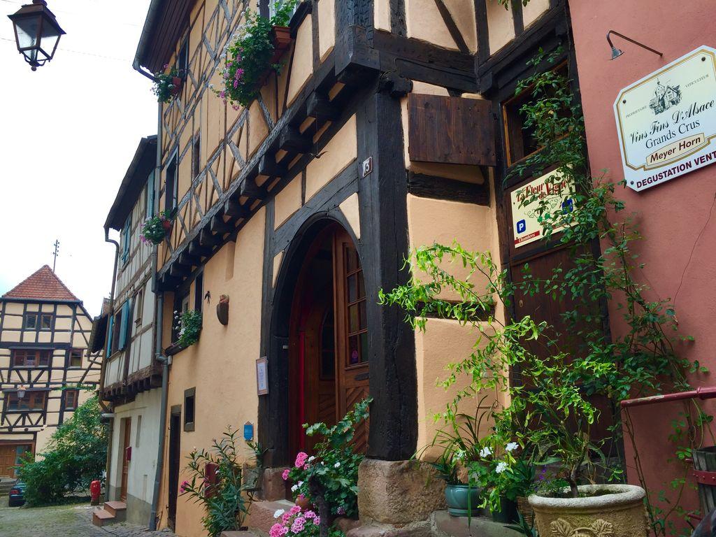 Ferienwohnung L'Etable (302799), Riquewihr, Oberelsass, Elsass, Frankreich, Bild 1