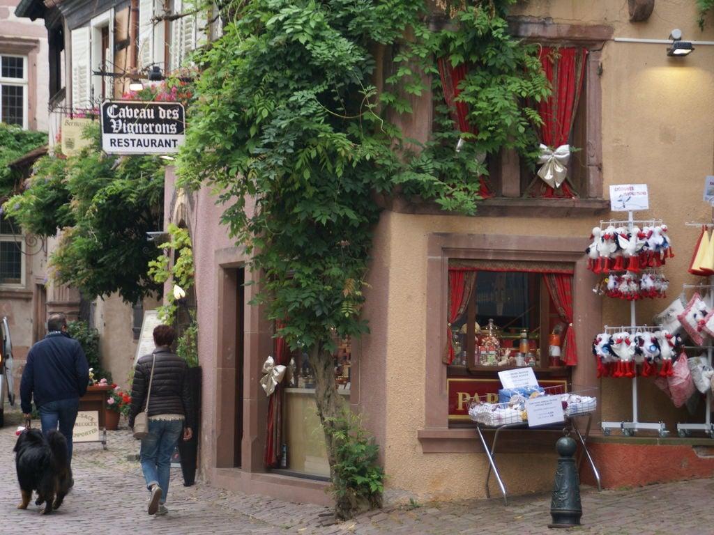 Ferienwohnung L'Etable (302799), Riquewihr, Oberelsass, Elsass, Frankreich, Bild 35