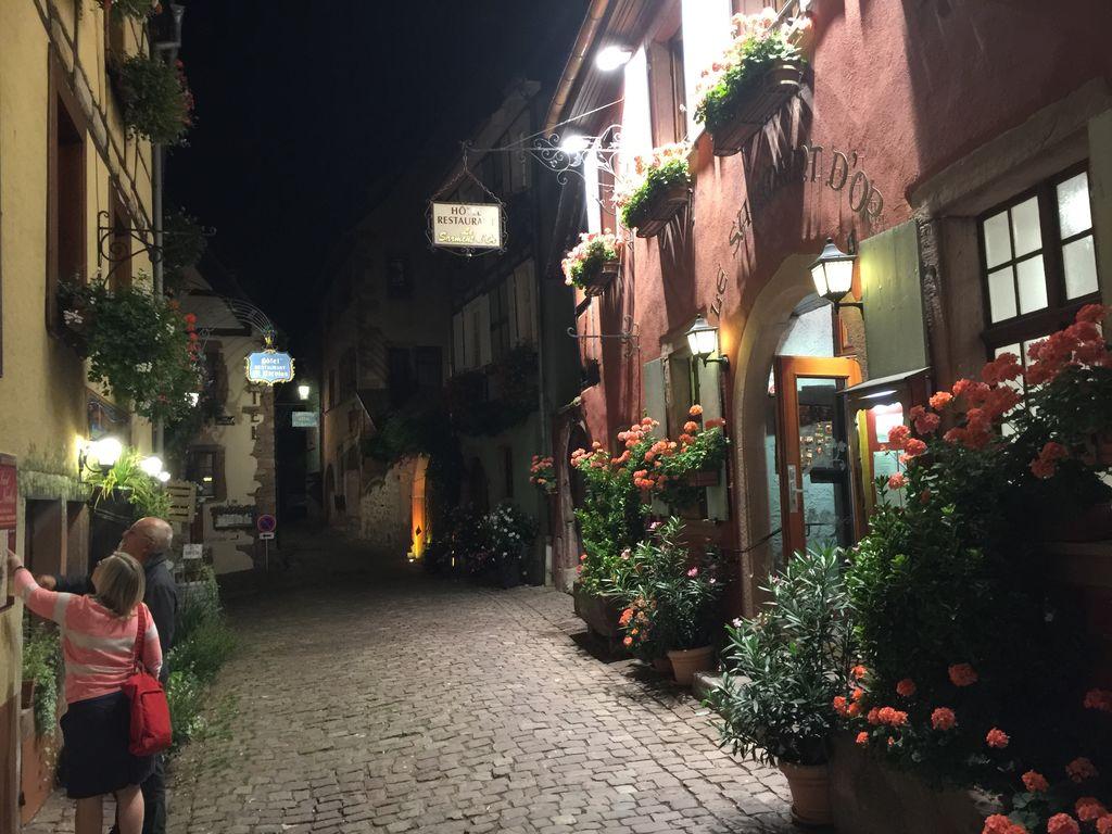 Ferienwohnung L'Etable (302799), Riquewihr, Oberelsass, Elsass, Frankreich, Bild 25