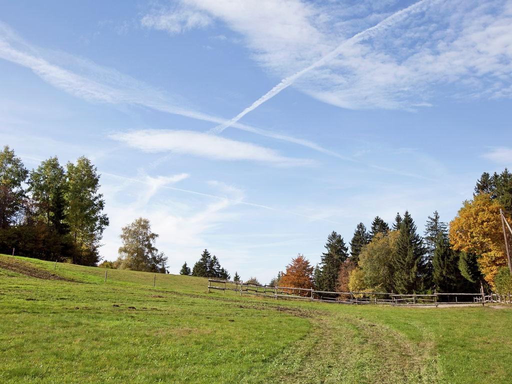 Ferienwohnung Pferdeklause (255405), Dachsberg, Schwarzwald, Baden-Württemberg, Deutschland, Bild 17