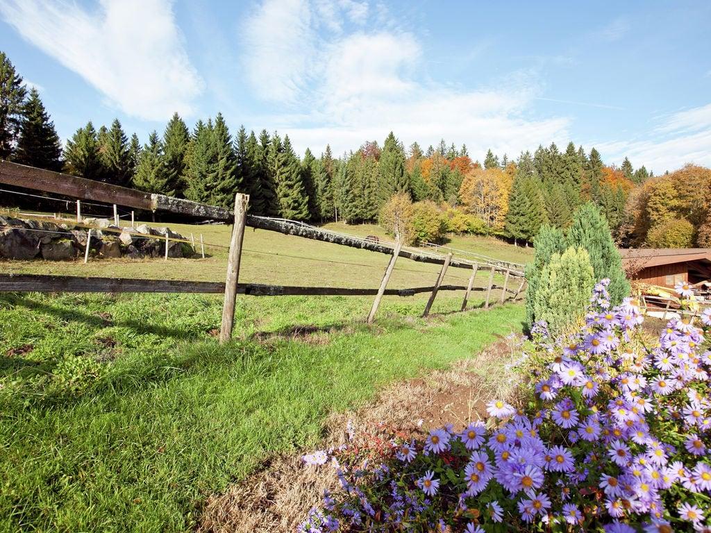 Ferienwohnung Pferdeklause (255405), Dachsberg, Schwarzwald, Baden-Württemberg, Deutschland, Bild 13