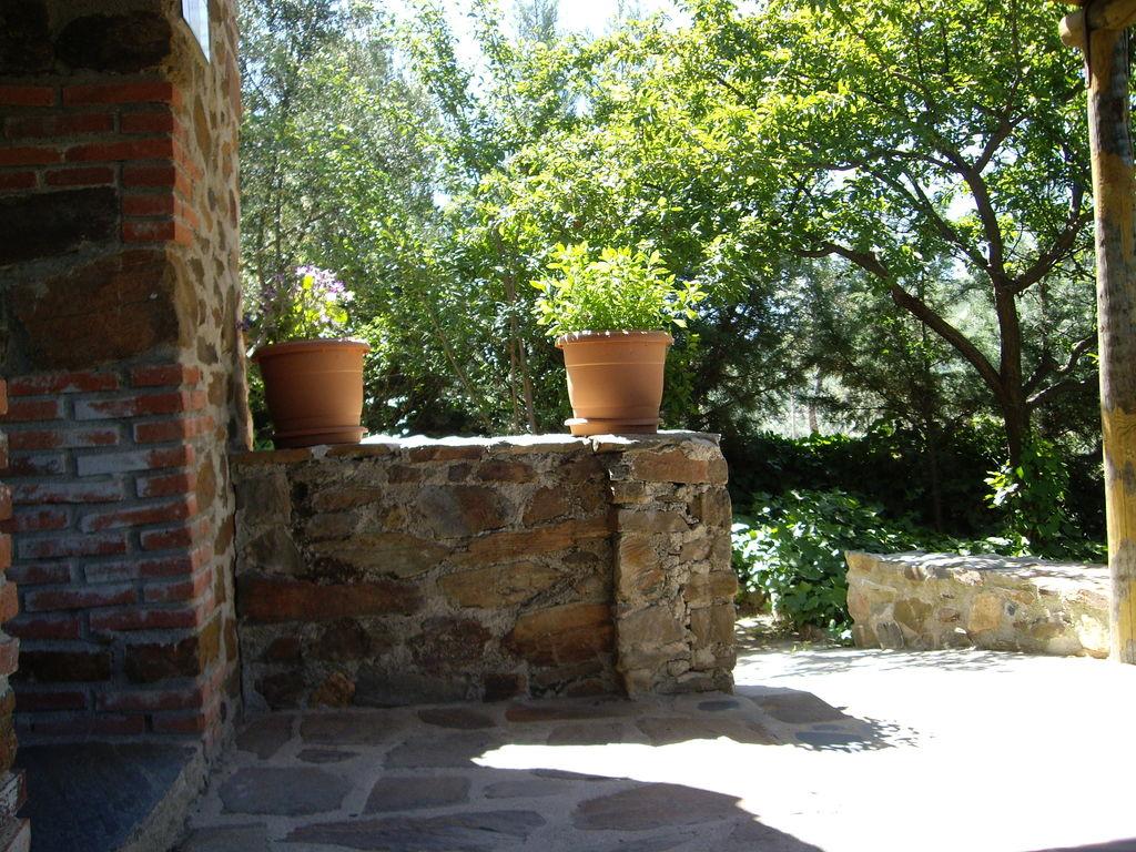 Ferienhaus Gemütlicher Bauernhof in Valencia de Alcántara mit Pool (178025), Jola, Caceres, Extremadura, Spanien, Bild 27