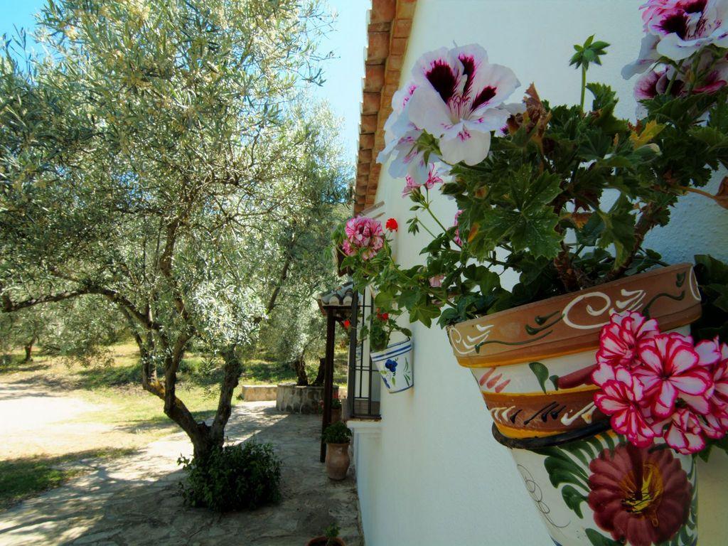 Maison de vacances Cortijo Los Olivos (89953), Nogales, Malaga, Andalousie, Espagne, image 32