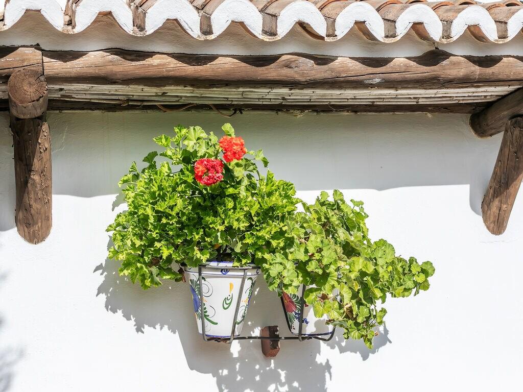 Maison de vacances Cortijo Los Olivos (89953), Nogales, Malaga, Andalousie, Espagne, image 39