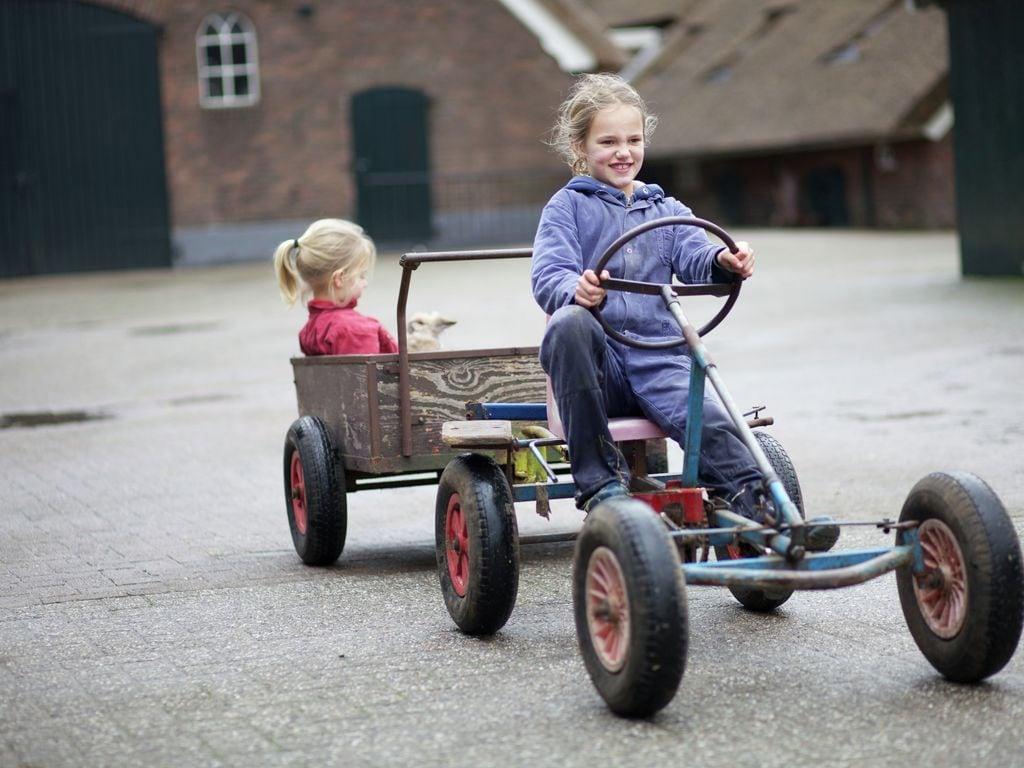 Ferienhaus Koe in de Kost 1 (90397), Heeten, Salland, Overijssel, Niederlande, Bild 30