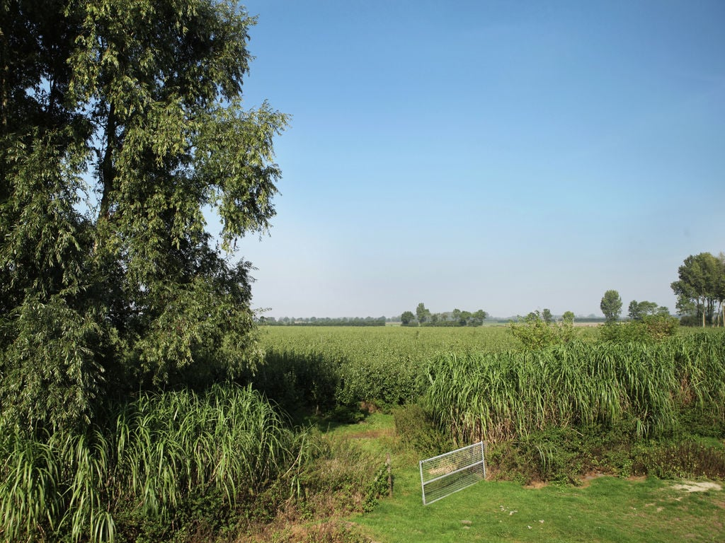 Ferienhaus Biezenpolder (90014), Eede Zld, , Seeland, Niederlande, Bild 4