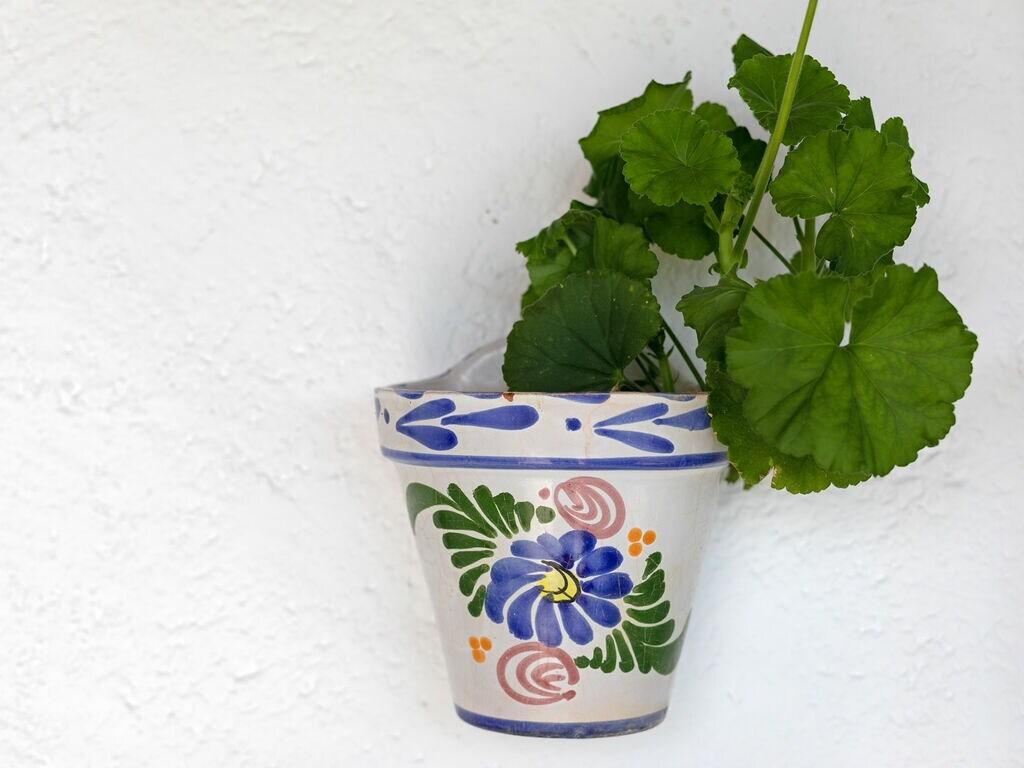 Maison de vacances El Encinar (101078), Nogales, Malaga, Andalousie, Espagne, image 31