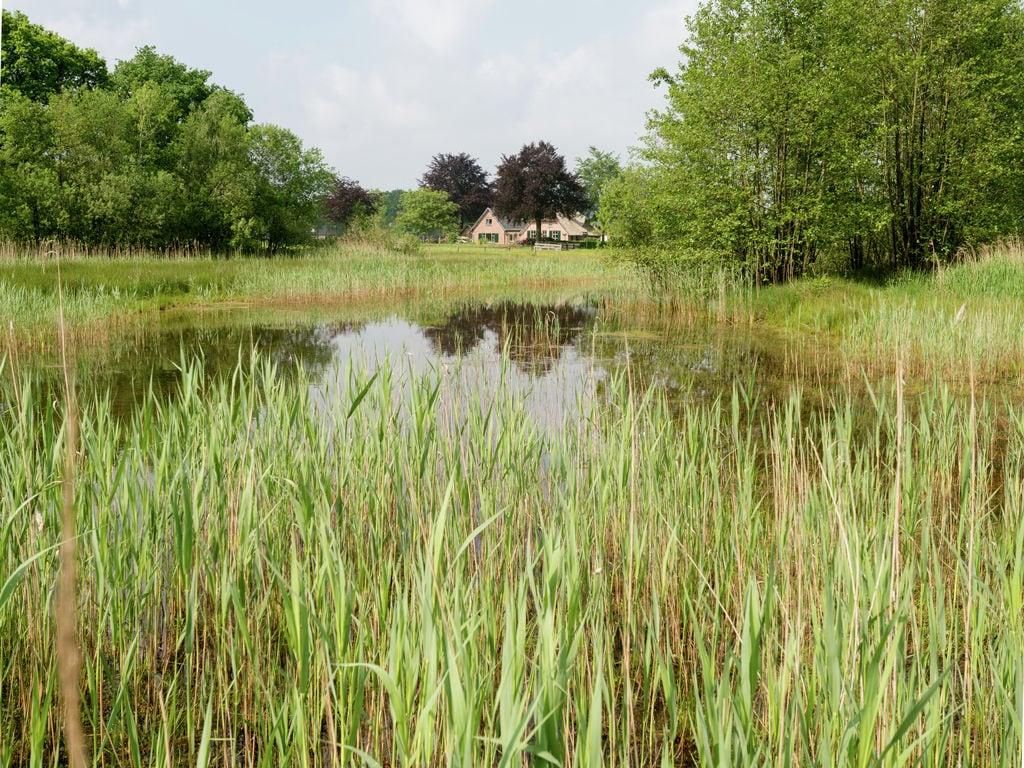 Ferienhaus 't Pollenseveld (101092), Emst, Veluwe, Gelderland, Niederlande, Bild 25