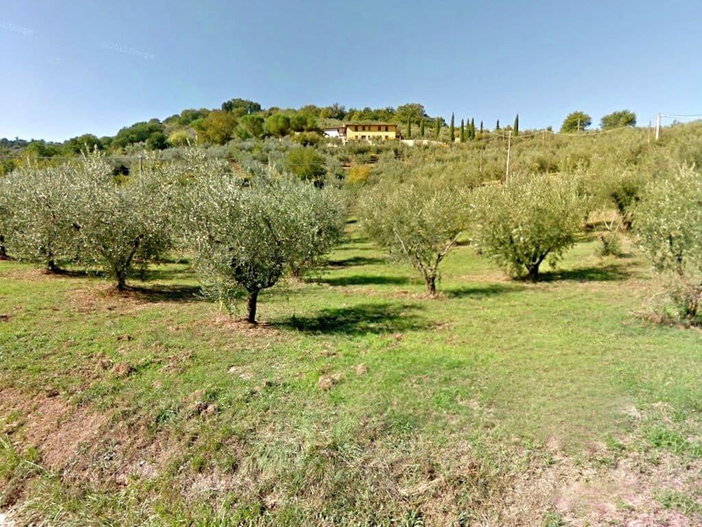 Ferienwohnung Molinella (101436), Bettona, Perugia, Umbrien, Italien, Bild 37