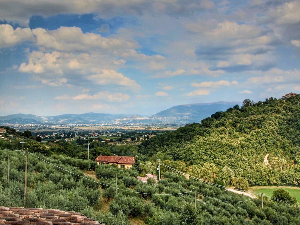 Ferienwohnung Molinella (101436), Bettona, Perugia, Umbrien, Italien, Bild 35