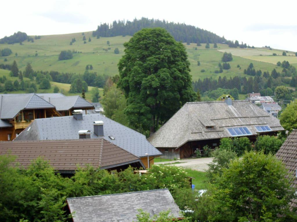 Ferienwohnung Wannenhof (255401), Bernau, Schwarzwald, Baden-Württemberg, Deutschland, Bild 22