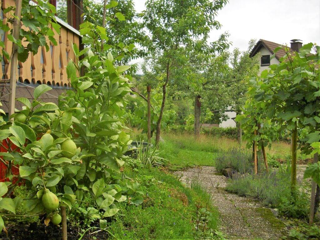 Ferienwohnung Ruhiges Appartement mit Balkon in Baden-Württemberg (255401), Bernau, Schwarzwald, Baden-Württemberg, Deutschland, Bild 29