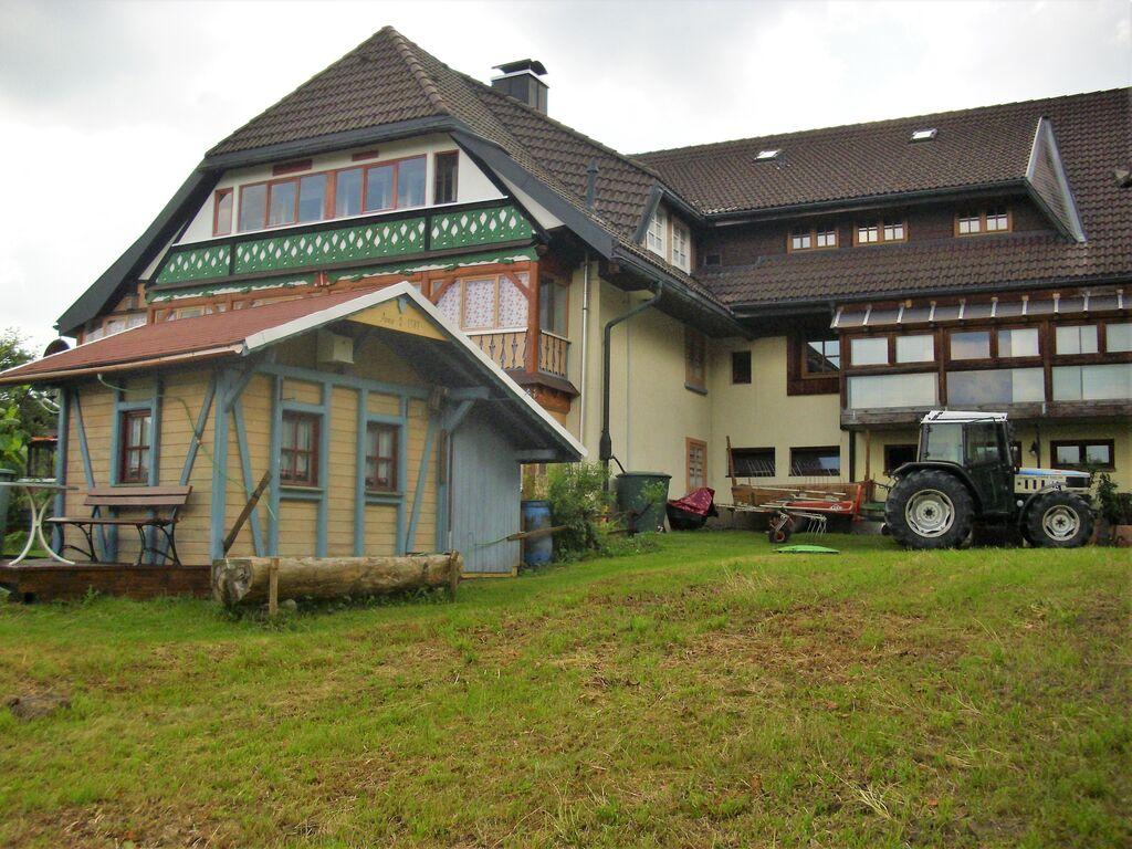 Ferienwohnung Ruhiges Appartement mit Balkon in Baden-Württemberg (255401), Bernau, Schwarzwald, Baden-Württemberg, Deutschland, Bild 31