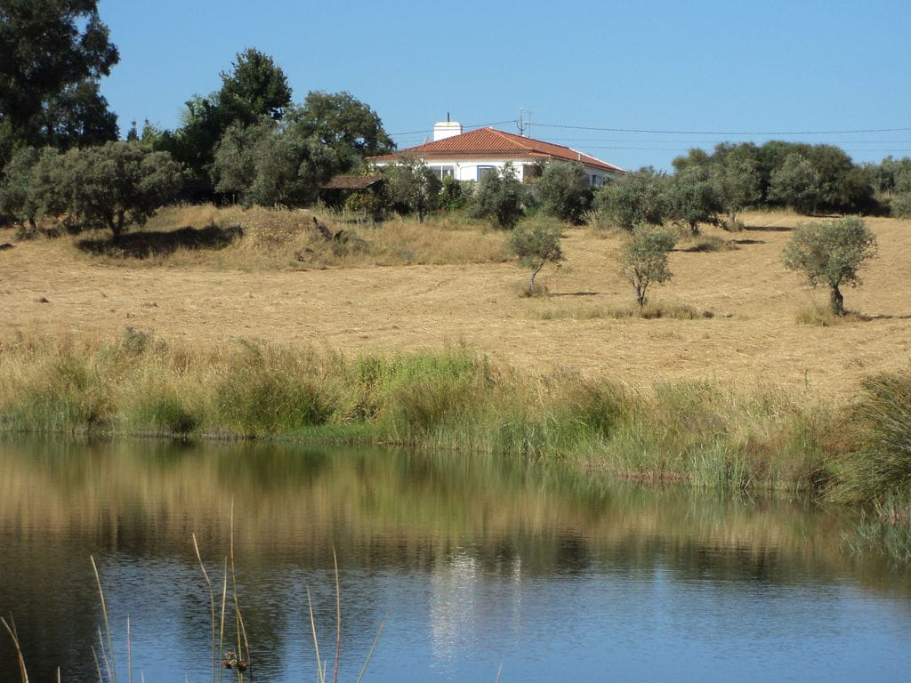 Holiday apartment Casa do Forno (101240), Montemor-o-Novo, , Alentejo, Portugal, picture 32