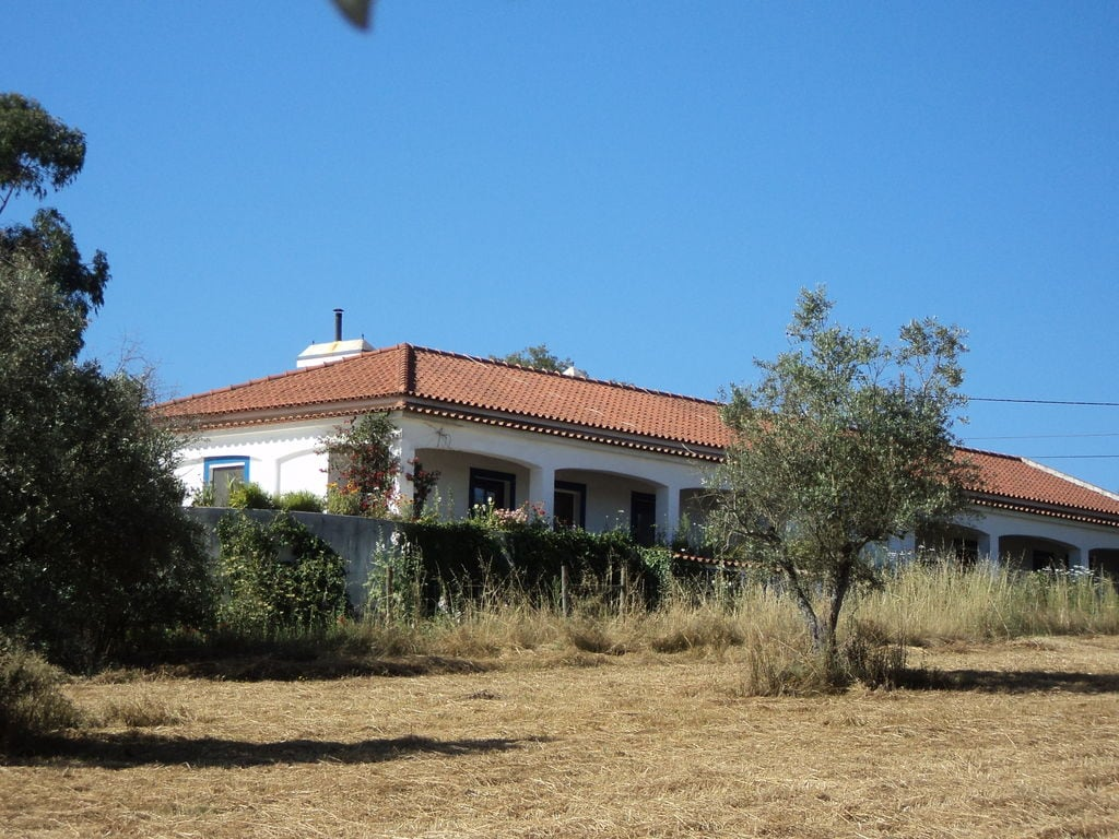 Ferienhaus Casa das Flores (101241), Montemor-o-Novo, , Alentejo, Portugal, Bild 10