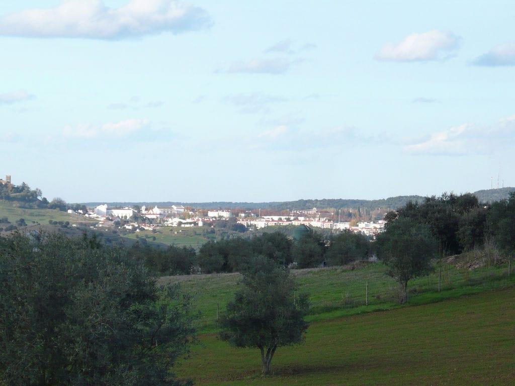 Ferienhaus Idyll. Bauernhof mit Außenpool in Montemor-o-Novo Alentejo (101241), Montemor-o-Novo, , Alentejo, Portugal, Bild 22