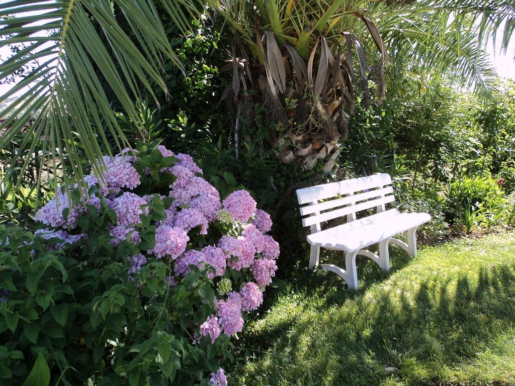 Ferienhaus Idyll. Bauernhof mit Außenpool in Montemor-o-Novo Alentejo (101241), Montemor-o-Novo, , Alentejo, Portugal, Bild 19
