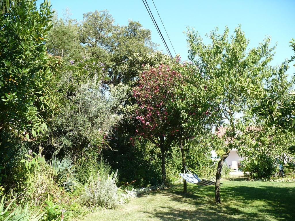 Ferienhaus Casa das Flores (101241), Montemor-o-Novo, , Alentejo, Portugal, Bild 26