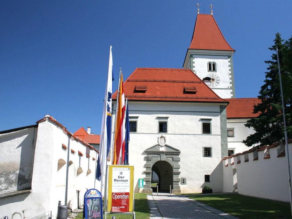 Appartement de vacances Rebecca (254164), Eberndorf, Lac Klopein, Carinthie, Autriche, image 14