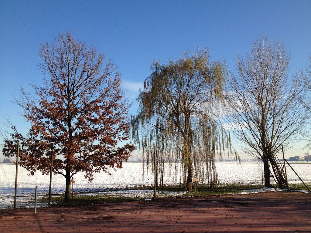 Ferienwohnung Gemütliches Bauernhaus in Venetien mit Gemeinschaftspool (256678), Occhiobello, Rovigo, Venetien, Italien, Bild 34