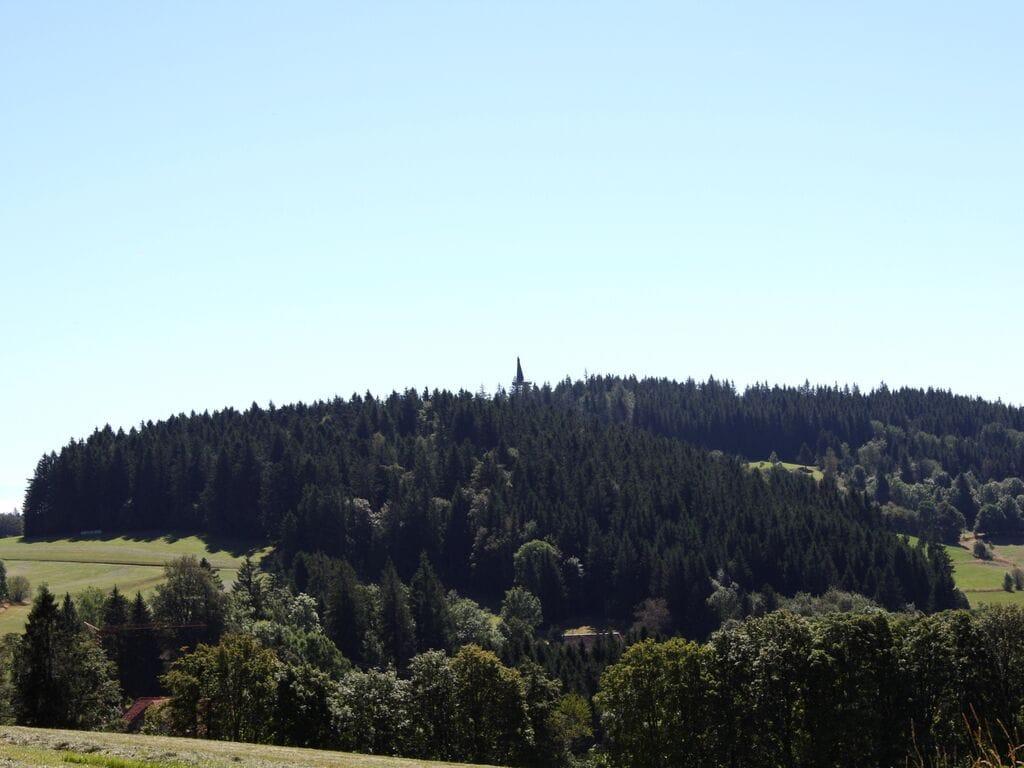 Ferienwohnung Gemütlicher Bauernhof in Herrischried mit nahen Wiesen (255393), Herrischried, Schwarzwald, Baden-Württemberg, Deutschland, Bild 29